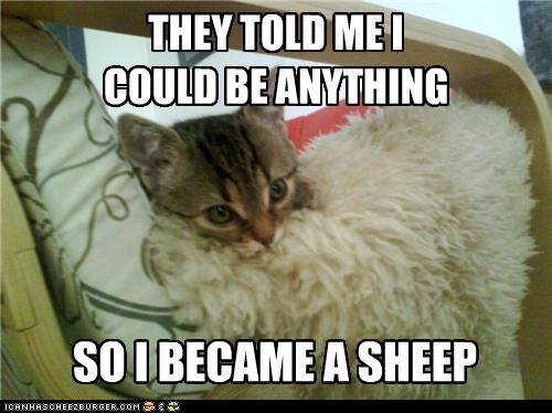 latest?cb=20131015180433 image funny pictures animal meme they told me i could anything,Animal Jam Meme