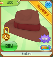Shop Fedora Brown