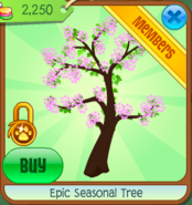 Epic Seasonal Tree Cherry Blossoms