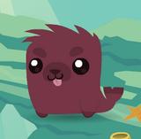 Pet Magenta Seal