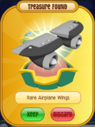 Black Rare Airplane Wings