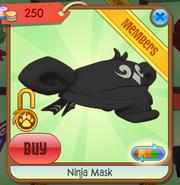 Black Ninja mask