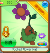 Potted Flower Hat - purple