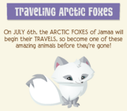Journal Traveling Arctic Foxes