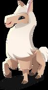 Llama Derp