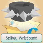 Spikey Wristband 2011