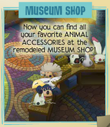 Jamaa-Journal Vol-101 Museum-Shop
