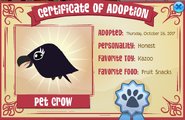 Pet Crow certificate