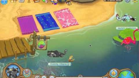 Image of: Fandom Animal Jam Spotlights Crystal Sands Animal Jam Wiki Fandom Powered By Wikia Fandom Video Animal Jam Spotlights Crystal Sands Animal Jam Wiki