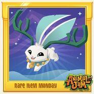 Rare-Item-Monday Rare-Deer-Antlers