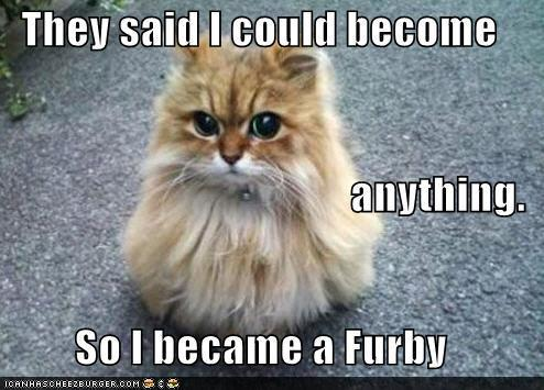 latest?cb=20130813164514 image funny pictures animal meme they told me i could anything,Animal Jam Meme
