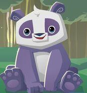 PANDA CHOSE ANIMAL