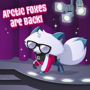 20190205 AJ ArcticFoxReturns-01