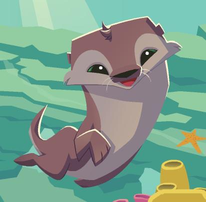 Otter Animal Jam Wiki Fandom Powered By Wikia