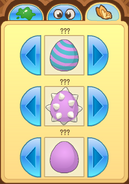 Pet-Egg Features-4