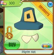 Pilgrim Hat (Dark-Turquoise)