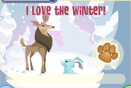 JAG I Love The Winter