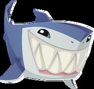 Renovated art shark