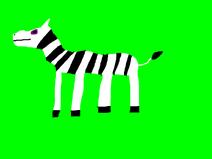 Animaljam-Zebra