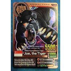 File:L UoIwanimal-kaiser-english-bronze-joe-the-tiger-evo-2-a-044.jpg