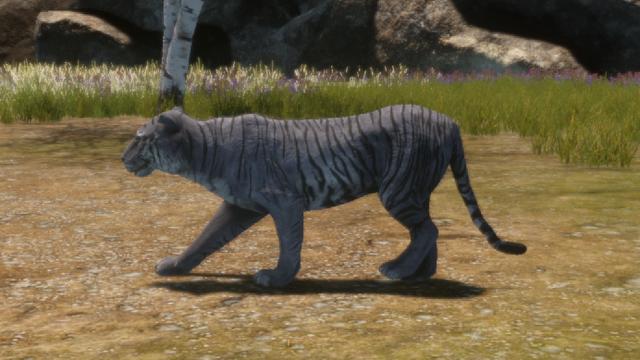 File:Animal - Maltese Tiger.png