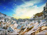 Snowridge Heights