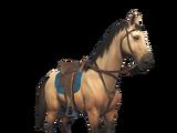 Horses (Saddled)