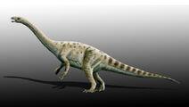 Adeopapposaurus
