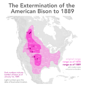 Extermination of bison to 1889