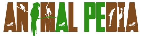 Animalpedia
