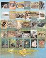 Thumbnail for version as of 17:00, November 14, 2010