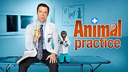 File:File-Animal Practice promo.jpeg