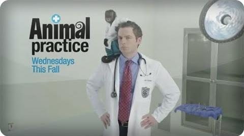 Animal Practice - Trailer