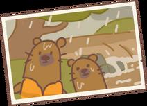 Beaver's Letter 1