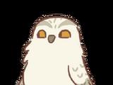 Messenger Hedwig