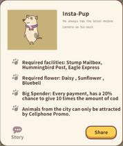 Insta-Pup Info