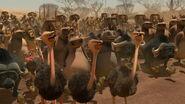 Madagascar2-disneyscreencaps.com-7371