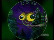 CTCD Owl