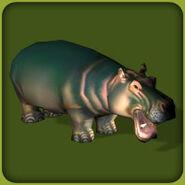 Hippopotamus (Blue Fang)