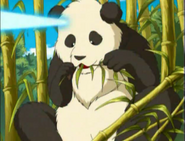 Totally Spies Panda