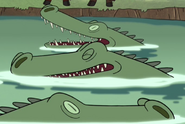 Gravity Falls Alligators