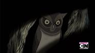OtGW Owl