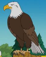 Simpsons Eagle