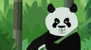 Giant Panda (Wild Kratts)