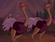 Fantasia 2000 Ostriches