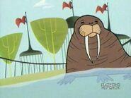 Dexter's Lab Walrus