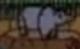 Rugrats Rhino