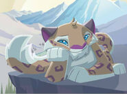 Animal Jam Snow Leopard