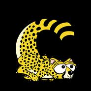 C for Cheetah
