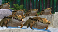 AHKJ Crocodiles